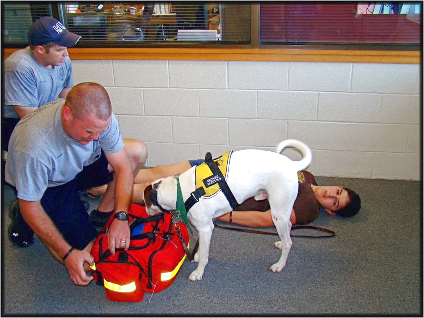 Psychiatric Service Dog Training