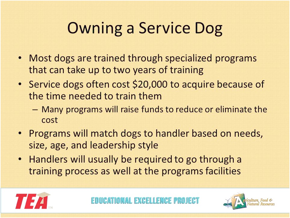 Service Dog Training Cost