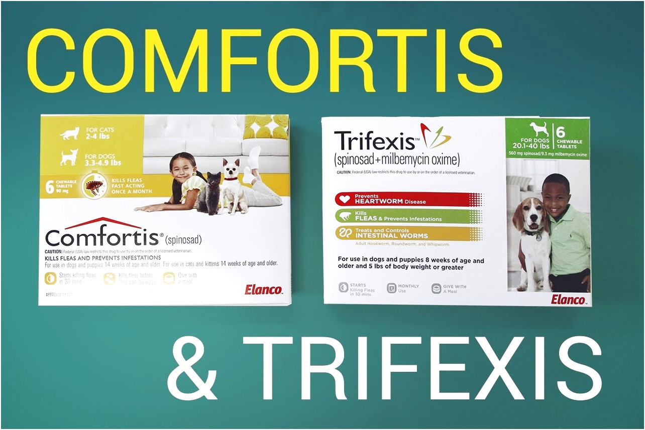 Trifexis For Cats