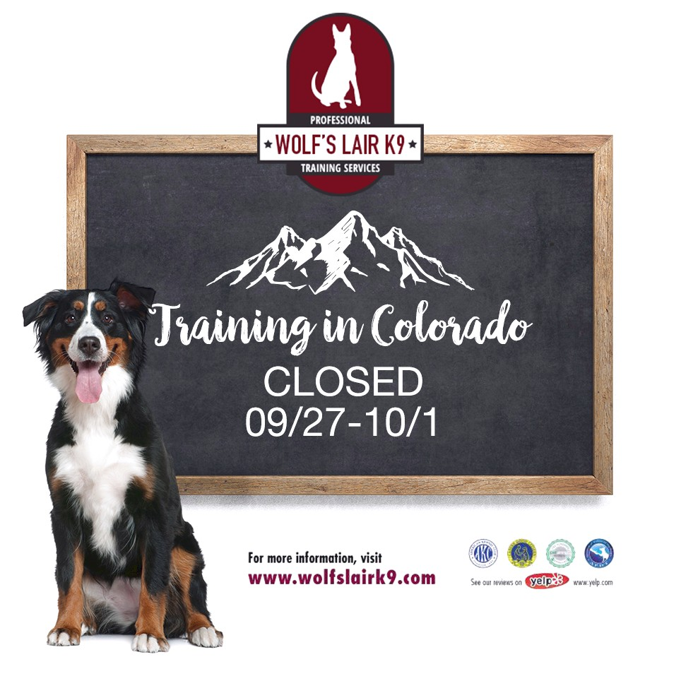 dog training classes near glenview