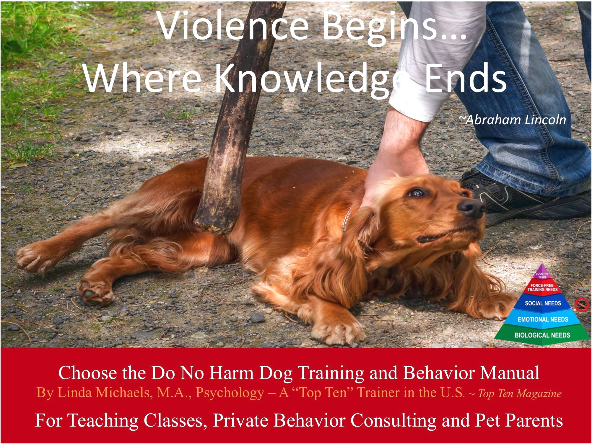 dog training classes near lincoln