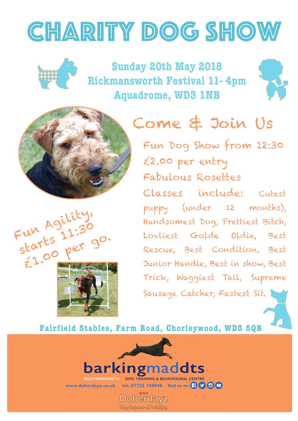 dog training classes near rickmansworth