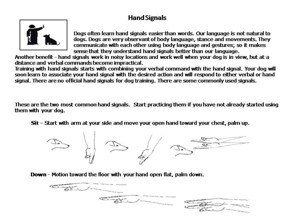 hand signals for training a deaf dog
