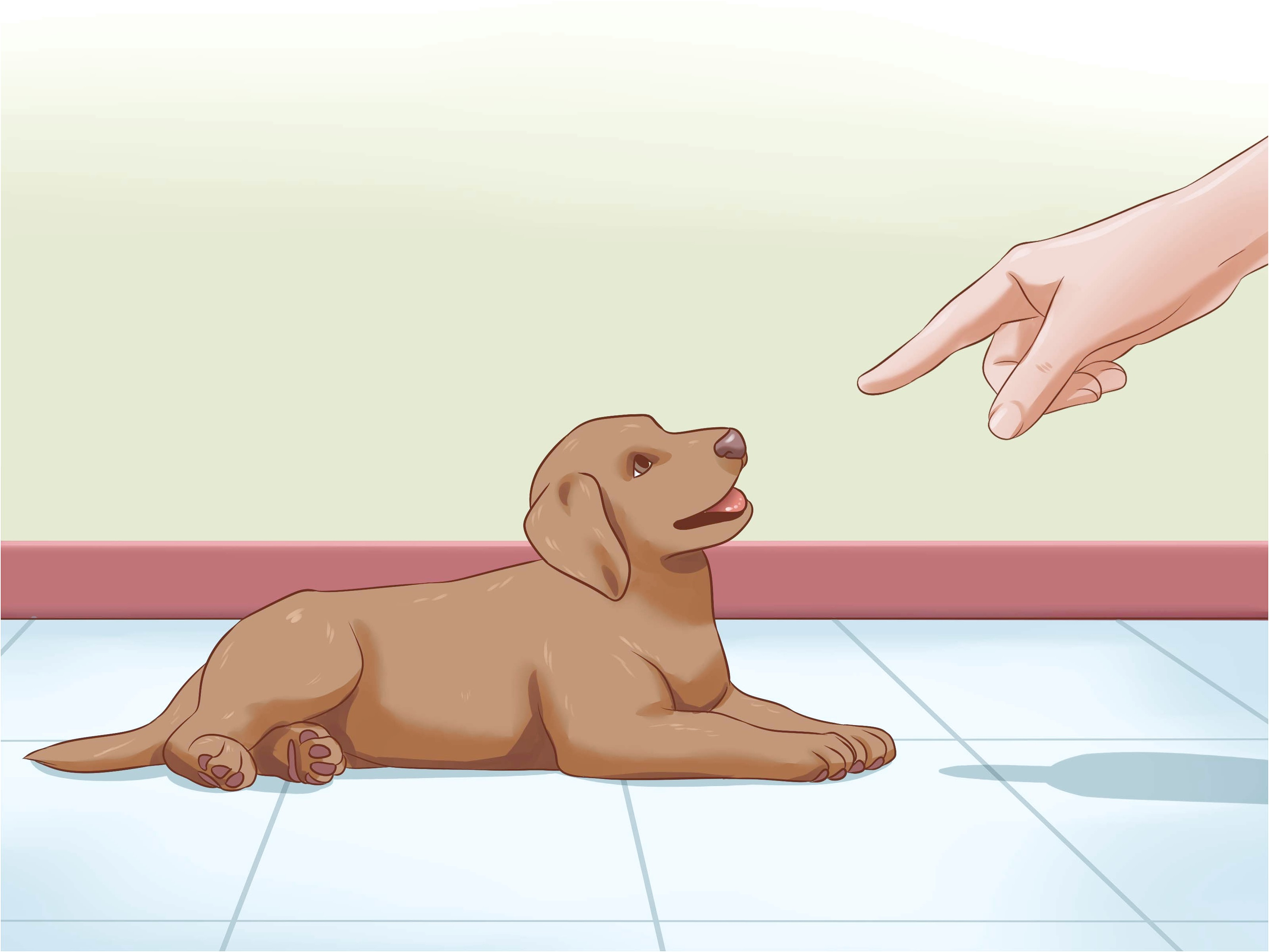 how to train a deaf dog no