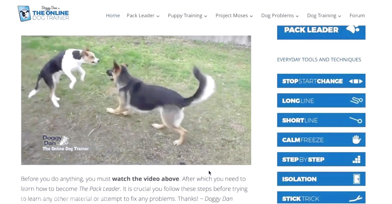 online dog trainer courses