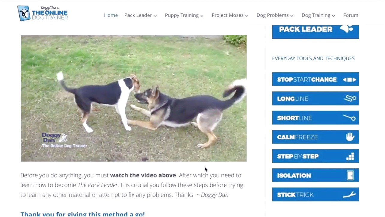 online dog trainer login