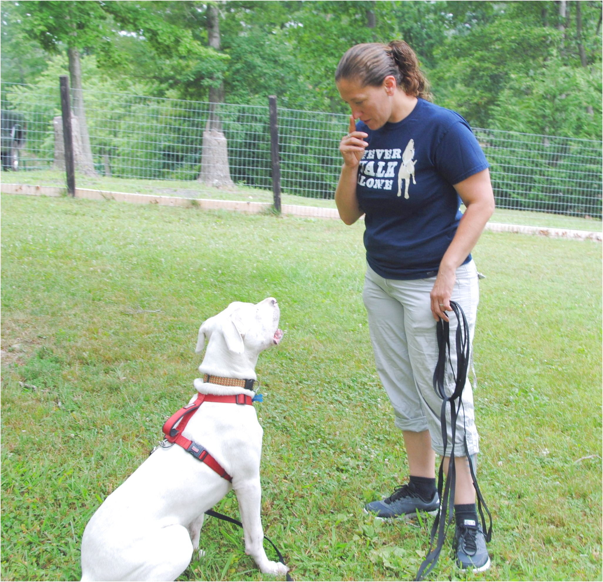 training a dog for a deaf person